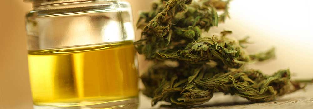 CBD-Oil-in-Kansas-City-on-CivicDaily