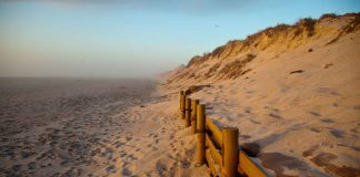 What-You-Should-Know-About-Guadalupe-Nipomo-Dunes-on-civicdaily