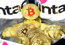 Gold-or-Bitcoin-Which-One-You-Should-Buy-These-Days-on-civicdaily